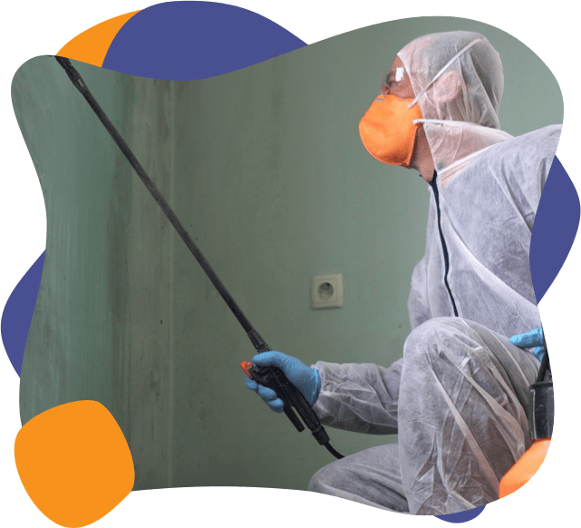 A Enviropure specialist removes mold from a home